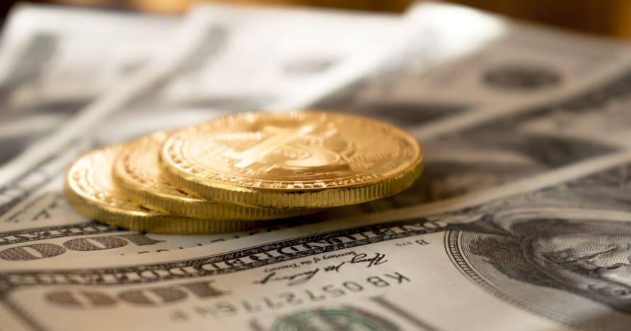 Mummy's Gold Casino -katsaus